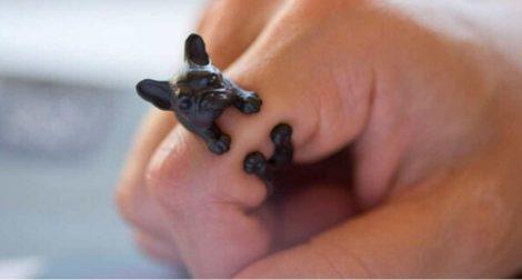 Francia Bulldog Kutya Gyűrű Fekete Vagy Ezüst Szín